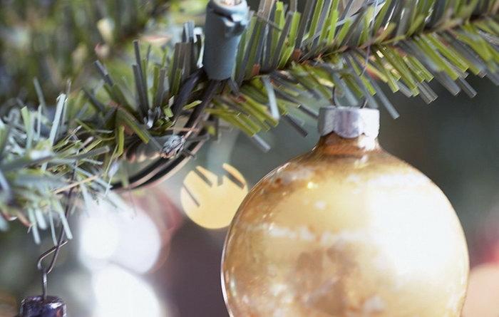 Автор фото: zapyataya.com