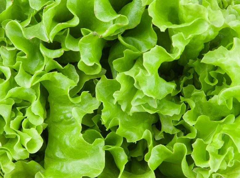 Картинки по запросу салат овощ