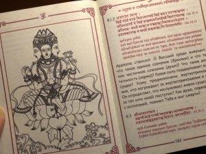 В Москве обсудили томский процесс над книгой «Бхагават-гита как она есть»