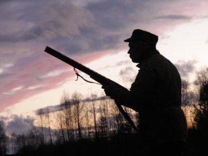 Арендаторы охотугодий получили право контролировать охотников