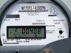 Спикер облдумы отвезла президенту квитанцию за электроэнергию